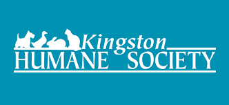 Kingston Humane Society - What's New?