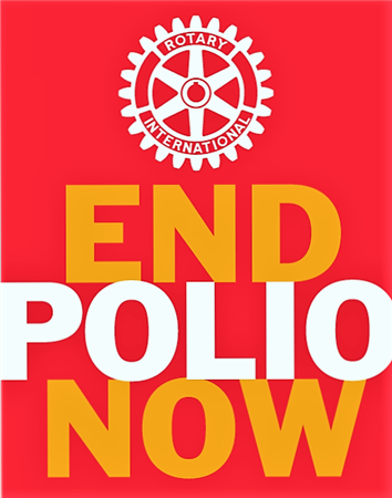 World Polio Day Party
