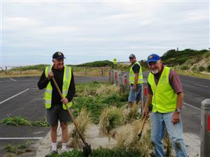 Tree plantings and suitable trees for the Port Fairy area