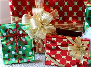 Come Enjoy lunch with your fellow Rotarians while we put together gifts for the Hope House family!