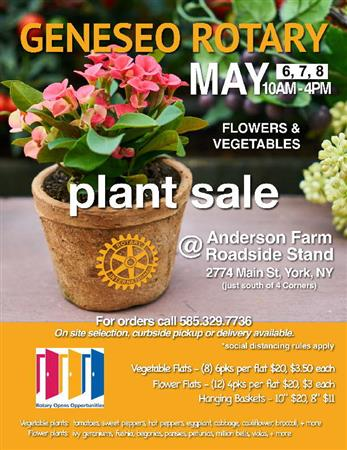 Hanging Basket and Potted Plant Sale