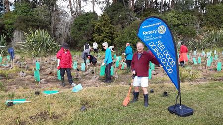 Waitarua Reserve Planting - Open to all Rotarians