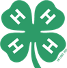 4-H Positive Youth Development