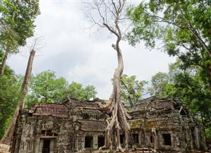 'Our Very Recent World of Difference Tour to Cambodia & Laos'