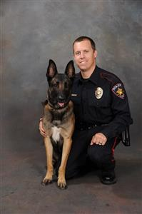 K-9 dogs Ajax and Nero